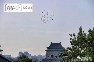 """一个北京家庭关于房子的""""战争""""..."""